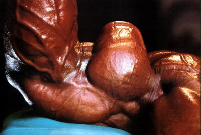 Как накачать руки(бицепс) Концентрированные сгибания на бицепс &quot
